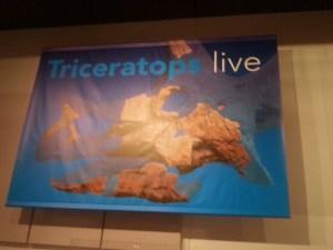 banner met triceratopsschedel