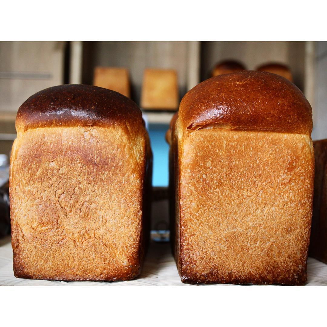 本日の山型食パン   OPAN オパン 東京 笹塚のパン屋
