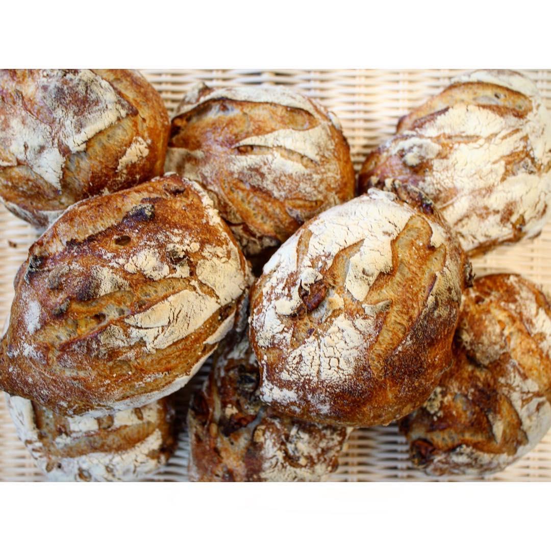 くるみ入り田舎パン | OPAN オパン|東京 笹塚のパン屋
