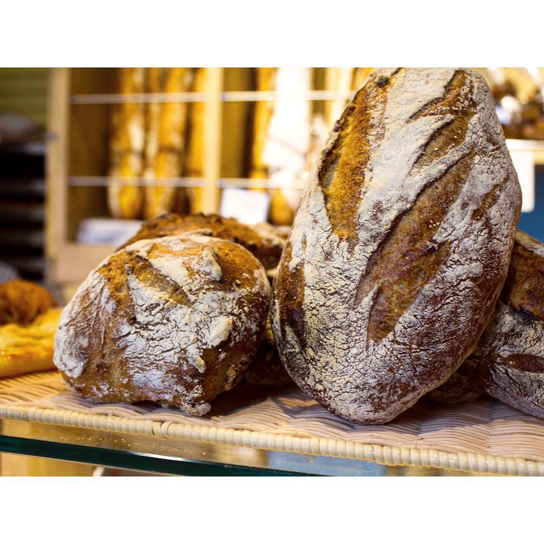 オパンのパンドロデヴ(2016.09.30) | OPAN オパン|東京 笹塚のパン屋