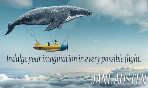Imagination is the indulgence of our information