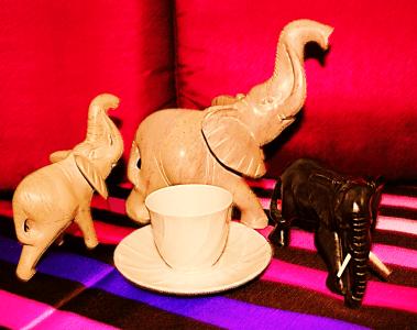 un éléphant dans un magasin de porcelaine