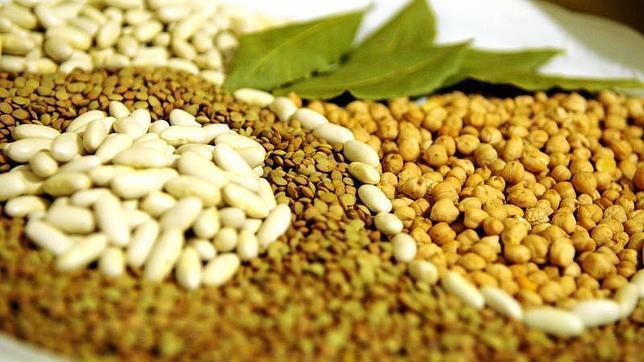 Fibra dietética, un superalimento para una óptima salud