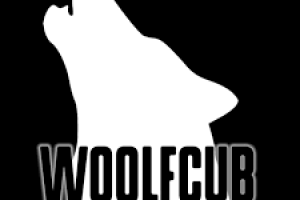 WoolfCub Productions is a Film Production Company currently in pre-production of Cage Fighter