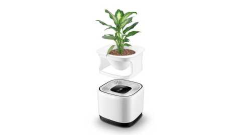 Nobico J009A Air Purifier - Nobico J009A Air Purifier Flower Pot Banggood Coupon Promo Code