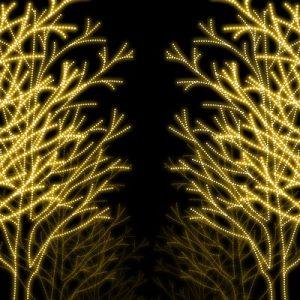 12月の仙台はSENDAI光のページェント(ひかぺー)で盛り上がる