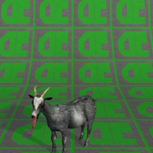 Free Goat Animal