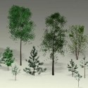 Low-poly Trees Free 3d Model