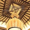 Luxury Ceiling Chandelier 3d Max Model Free