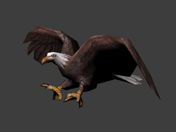 Animated Eagle Flying Free 3ds Max Model -  Max