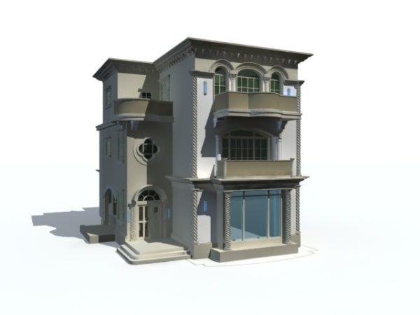 Mansion Modern House