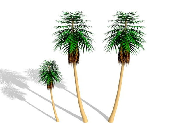 Palm Trees 3ds Max Model Free (Max) - Open3dModel