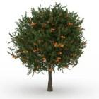 شجرة فاكهة