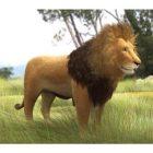 Otlak Aslan Hayvanı