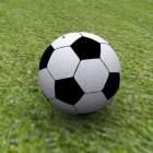 كرة القدم على المراعي