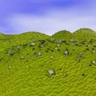 Manzara Yeşil Tepeler Ve Dağlar