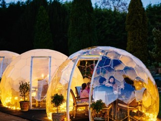 Living Spaces Domes