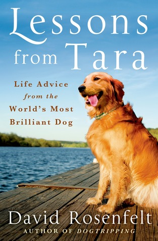 LESSONS FROM TARA: LIFE ADVICE FROM THE WORLD'S MOST BRILLIANT DOG BY DAVID ROSENFELT: BOOK REVIEW