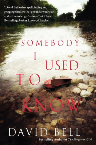 SOMEBODY I USED TO KNOW BY DAVID J. BELL: BOOK REVIEW