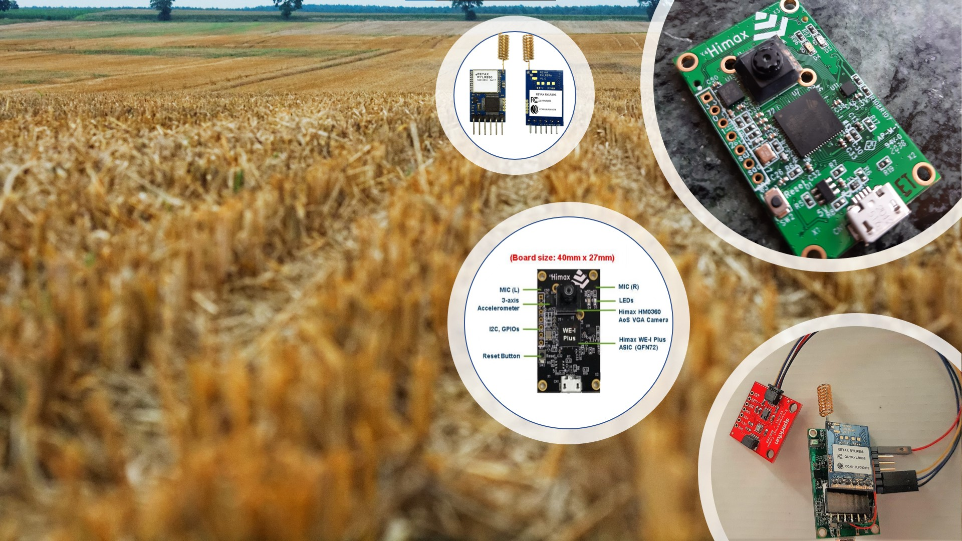 Smart Agriculture Application Himax WE-I Plus EVB Endpoint AI Development Board Featured Image
