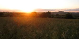 The sun sets.