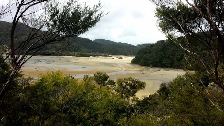 View from our hike in Able Tasman. This is low tide!