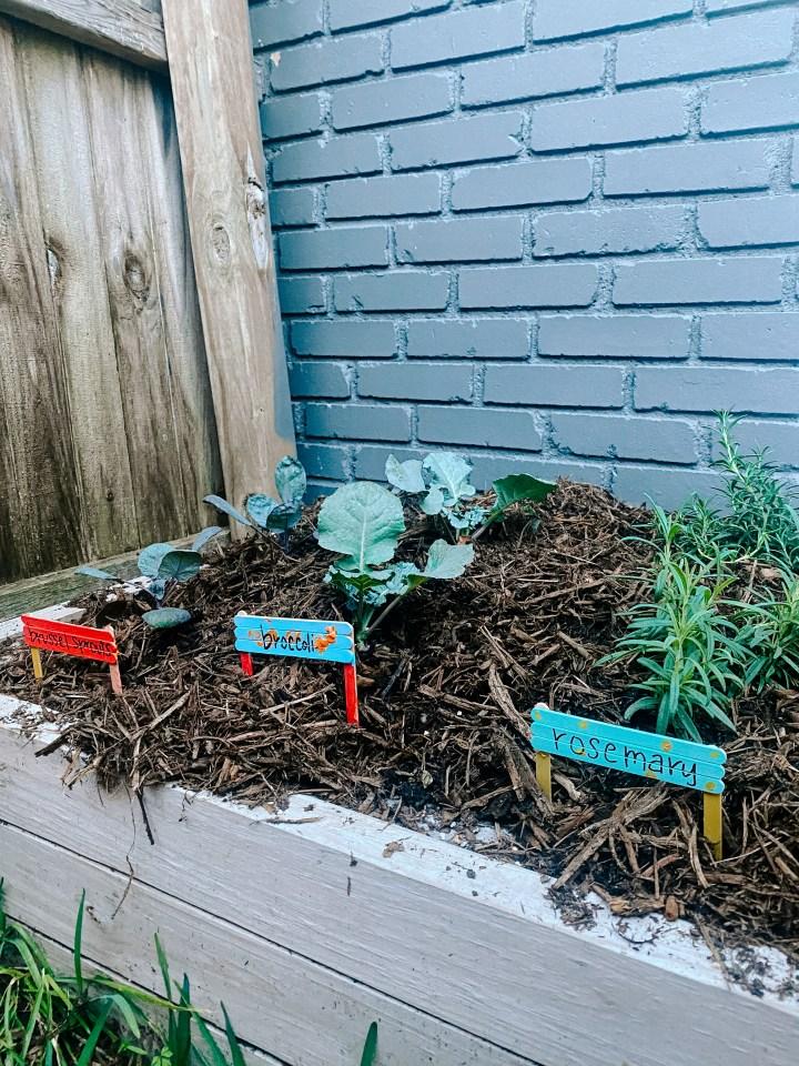 gardening craft for kids
