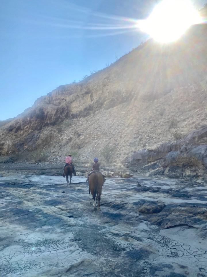 lajitas stables trail rides review