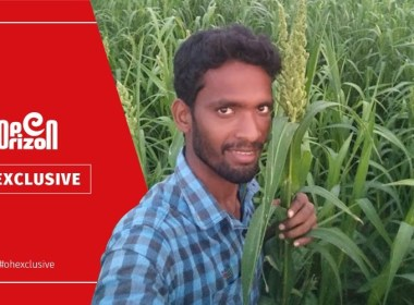 studied-software-engineer-sowing-small-grain