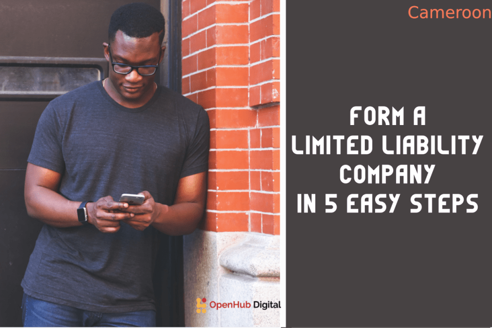 form a limited liability company in Cameroon