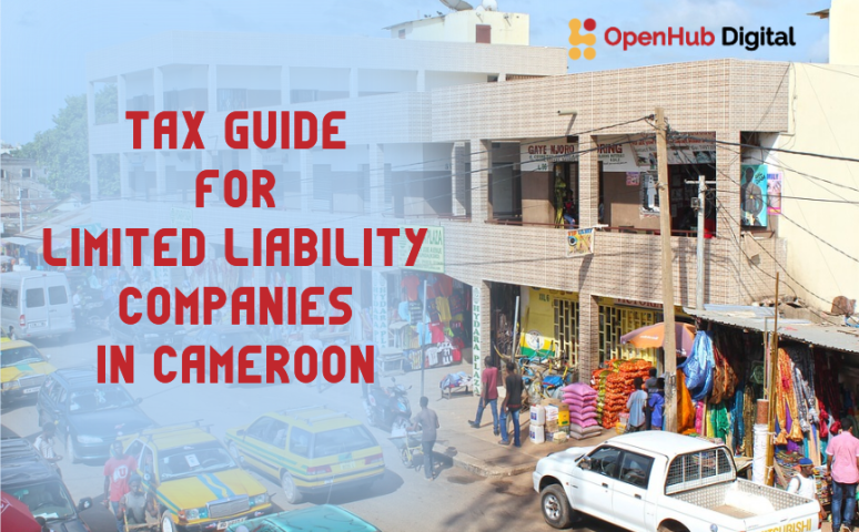 Tax Guide for Limited Liability Companies in Cameroon