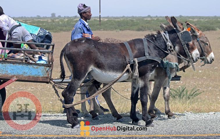 Axle tax in Cameroon