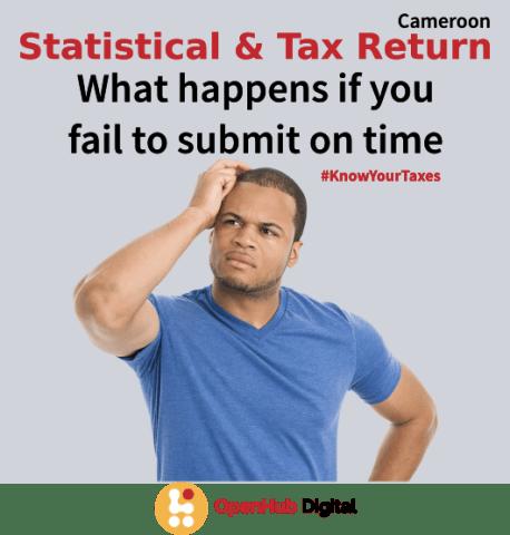 statistical and tax return