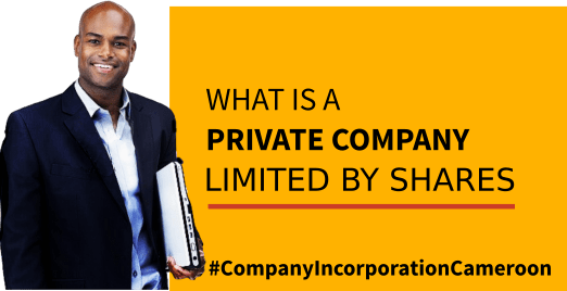 what is a private company?