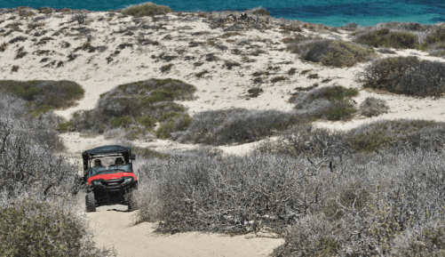 Four Seasons Resort and Residences Los Cabos at Costa Palmas Launches Camp Verano