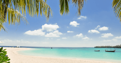 Jamaica Tourist Board Hosts Virtual Product Showcase for Canadian Travel Advisors