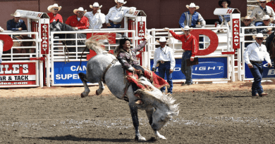 Canadians at calgary stampede