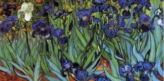 Movimento è Van Gogh Alive – The Experience