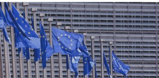 Elezioni europee 2019: cittadinanza attiva, un valore da non perdere