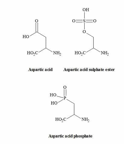 Figure 23. Carboxylic acid metaphors