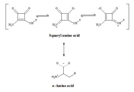 Figure 28. Squaramide – amino acid synergy