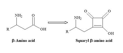 Figure 30. Semisquarate β-amino acids