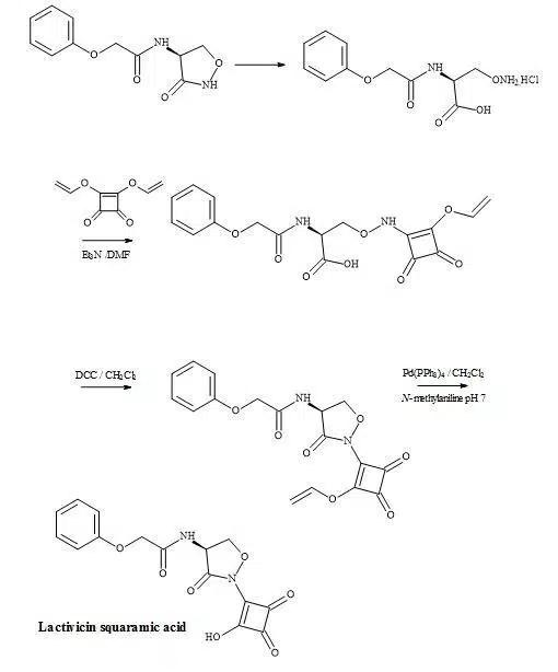Figure 42. Synthesis of lactivicin squaramic acid