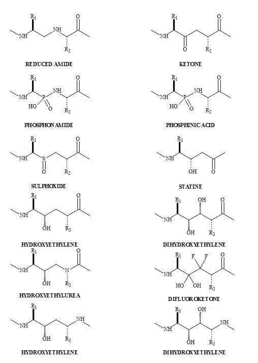 Figure 45. Dipeptide metaphors