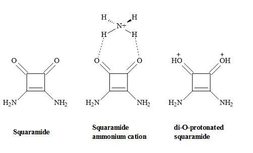 Figure 51. Squaramide complex