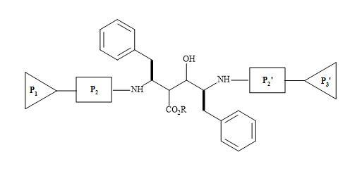 Figure 64. C2 symmetric homodimer