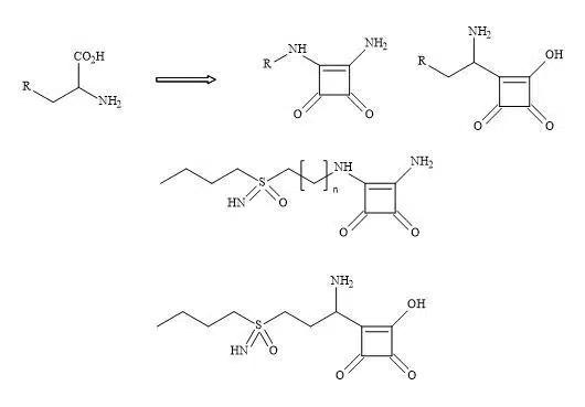 Figure 69. Squaryl buthionine sulphoximine