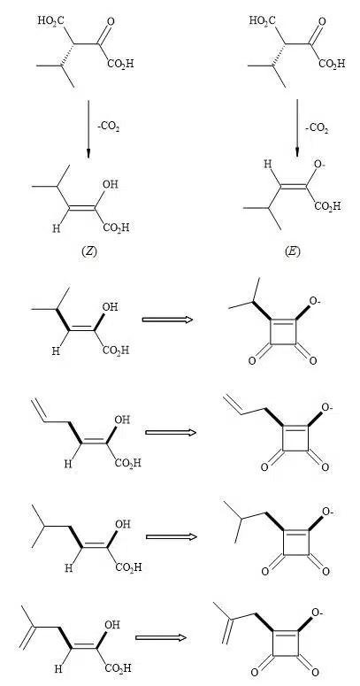 Figure 74. Thermus thermophiles β-isopropylmalate dehydrogenase (IMDH) – squaryl analogues
