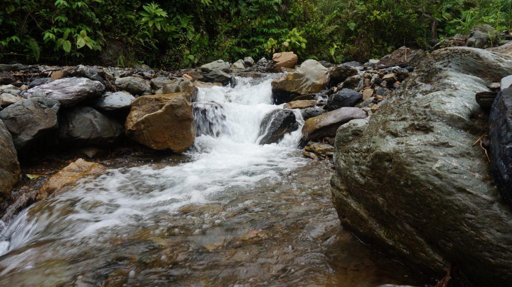 Creek in El Choco