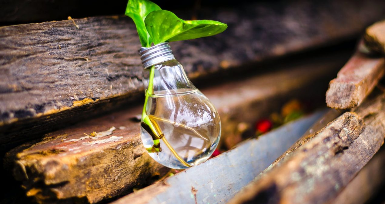 Jugaad – An act of Frugal Innovation